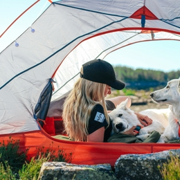 Gifts for camping with dogs