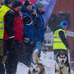 Iditarod winner Thomas Wærner: - My team was awesome the whole way
