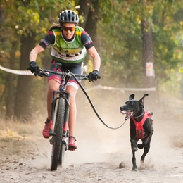 Bikejoring race rules