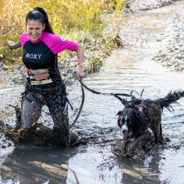 How to prepare your dog for an obstacle race