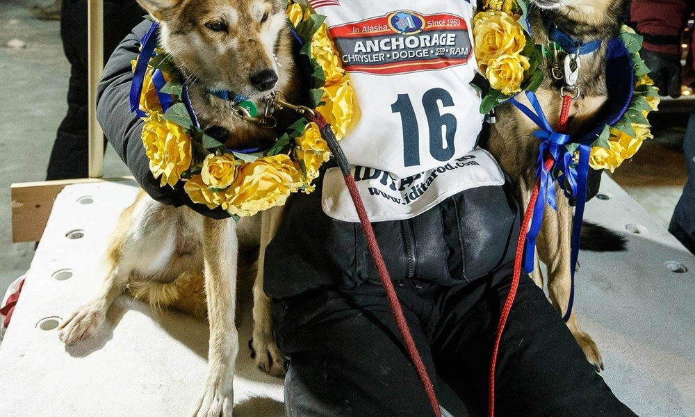 Meet Dallas Seavey - one of the world's best dog mushers