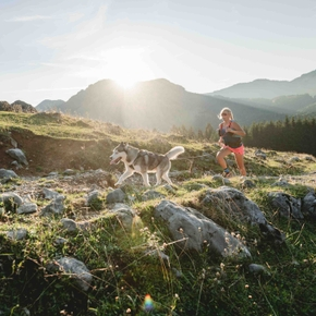 8 tips for trail running with your dog